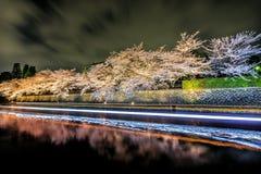 樱花在晚上,京都在夜之前 库存图片