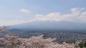樱花在有富士山和城市的春天 影视素材
