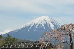 樱花树耷拉的分支在一个木屋顶的 富士山在背景中 免版税库存图片