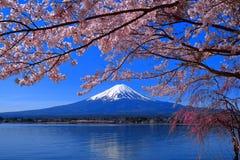 樱花盛开和Mt 富士河口湖日本 免版税库存照片
