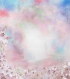 樱花花油画 库存照片