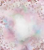 樱花花油画 库存图片