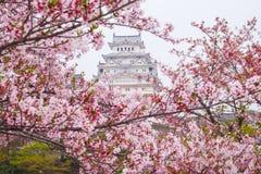 樱花围拢的姬路城堡 这是联合国科教文组织wor 免版税库存图片