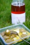 橄榄关闭在野餐 免版税库存照片