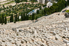橄榄山公墓视图 免版税库存图片