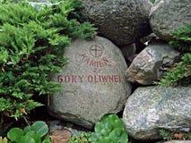 从橄榄山的一块石头 免版税库存照片