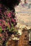 橄榄山的古老墓地。 耶路撒冷 免版税库存照片