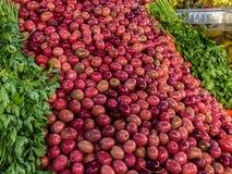 橄榄待售在一个souk市场上在阿加迪尔,摩洛哥 免版税库存图片