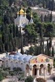 橄榄挂接在耶路撒冷 库存图片