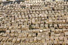 橄榄挂接的古老犹太墓地  免版税图库摄影