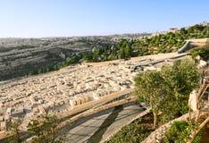 橄榄挂接的古老犹太墓地  免版税库存图片