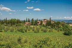 橄榄树、葡萄园和小山看法与别墅在上面在托斯坎乡下 免版税图库摄影