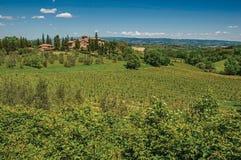 橄榄树、葡萄园和小山看法与别墅在上面在托斯坎乡下 库存照片