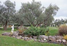橄榄树和古老雕塑在一个异乎寻常的公园 免版税库存图片