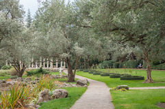 橄榄树和雕塑在一个异乎寻常的公园 库存图片
