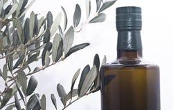 橄榄树枝和一个瓶橄榄油 免版税库存图片
