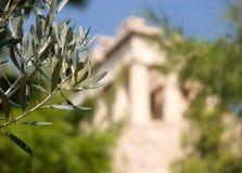 橄榄树枝和上城在雅典在被弄脏的背景中 免版税库存图片