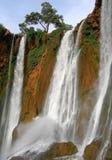 橄榄树瀑布摩洛哥,小瀑布d ` Ouzoud Maroc 免版税库存图片