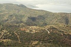 橄榄树长满的山 免版税库存照片