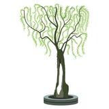 橄榄树-一棵橄榄树的符号图画 免版税库存图片