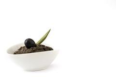 黑橄榄橄榄凤尾鱼汤用被隔绝的鲥鱼、大蒜和橄榄油 免版税库存图片