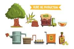 橄榄油产品的过程从耕种到完成品生长树,收获的,送到工厂 皇族释放例证
