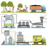 橄榄油产品过程阶段,收获橄榄,盒完成品和交付对消费者传染媒介 免版税库存照片