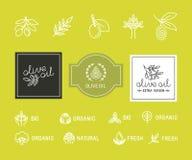 橄榄油包装 免版税图库摄影