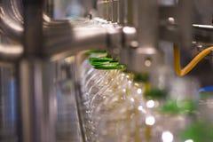 橄榄油工厂,橄榄色的生产 免版税图库摄影
