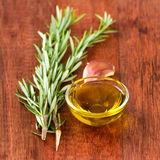 橄榄油用大蒜 免版税库存照片