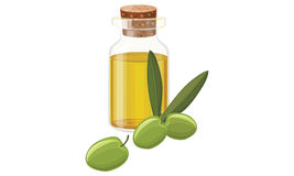 橄榄油,橄榄 免版税图库摄影