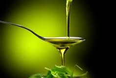 橄榄油 免版税库存照片