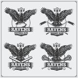 橄榄球、棒球、曲棍网兜球和曲棍球商标和标签 与掠夺的体育俱乐部象征 皇族释放例证