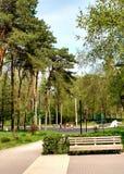 橄榄球在公园 库存图片