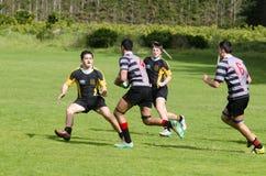 橄榄球在新西兰 库存图片