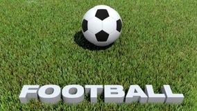 橄榄球在草的texte 3D和球 免版税库存照片