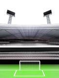 橄榄球场垂直的视图有白色背景 向量例证