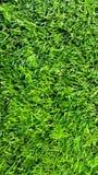 橄榄球场草皮 库存照片