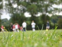 橄榄球培训 免版税图库摄影