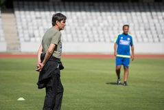 橄榄球教练胜者皮楚尔克 库存照片