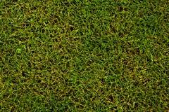 橄榄球球场足球 免版税库存照片