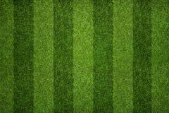 橄榄球,足球场 免版税图库摄影