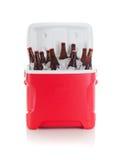 橄榄球:充分饮料致冷机啤酒瓶准备好党 库存照片