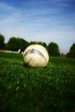 橄榄球#25 免版税库存照片