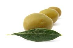 橄榄色叶子和果子 图库摄影