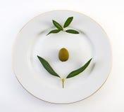 橄榄色牌照 库存图片