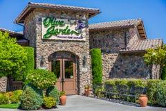 橄榄色的庭院餐馆 库存图片