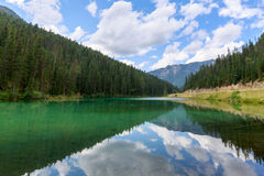 橄榄色的湖 库存图片