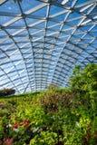 橘园在莫斯科Zaryadye公园  免版税图库摄影