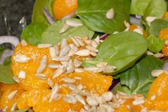 橘子沙拉菠菜 免版税库存照片